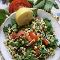 Healthy Sprouts salad with low fat paneer dressing