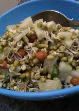 Sprouts Salad