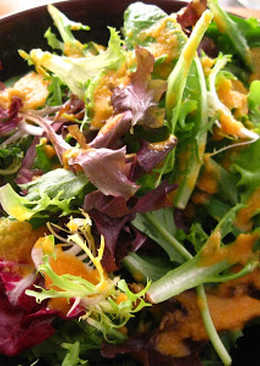 Garden Salad with Miso Ginger Dressing