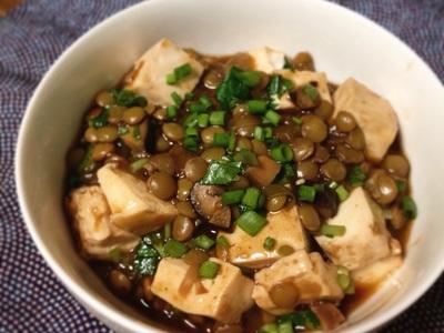 Spicy Lentil Mabo Tofu