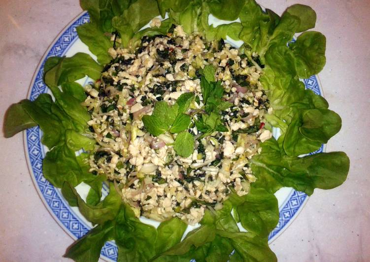 Chicken Salad With Vegetables Lab Gai Recipe By Kent Harvy Kit