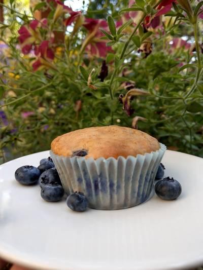Blueberry Muffins 💜