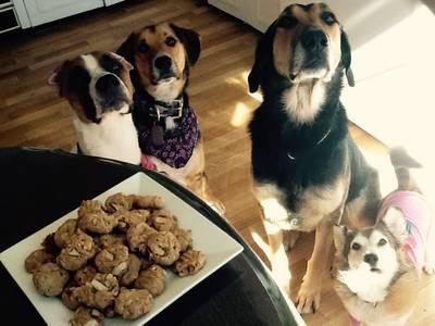 Healthy Apple/Peanut Butter Dog Treats!