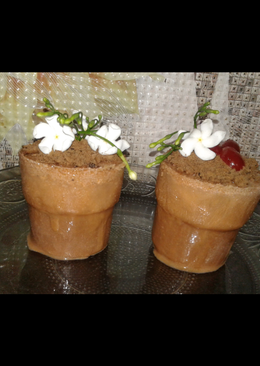 Chocolate magic flower pot