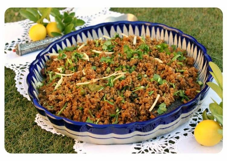 Pakistani Style Stir Fried Spicy Minced Meat – Bhunna Qeema