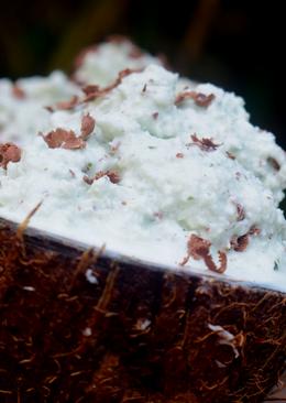 Vegan Mint and Coconut Ice Cream