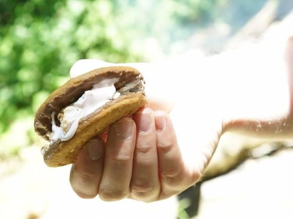 The easiest, tastiest S'mores