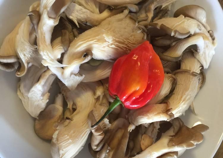 Oyester Mushrooms