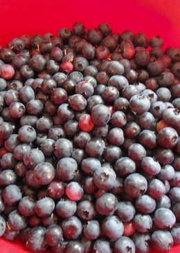 Blueberry Jam/Sauce