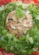 Plato especial de pollo frío para dieta