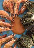Langostinos con alcachofas al horno