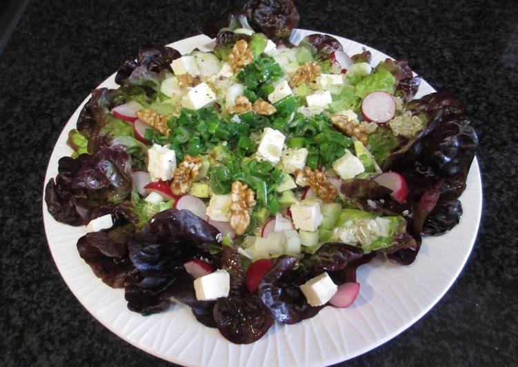 Hojas de ensalada morada con quinua y queso de cabra Cocinar queso de cabra