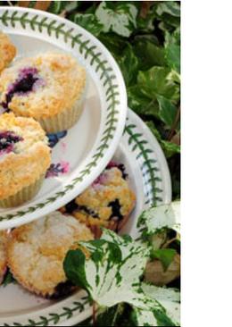 Muffins de arándano de annie