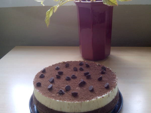 Tarta de queso mascarpone y chocolate