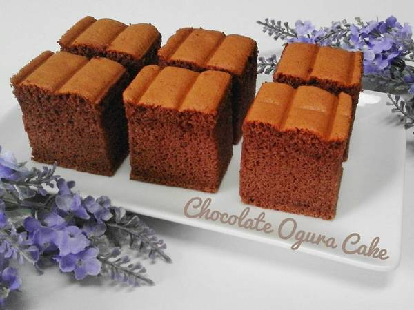 Chocolate OGURA CAKE