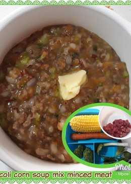 Bubur Tim Daging Cincang Brokoli Wortel