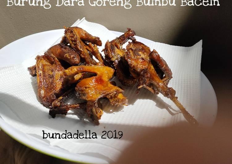 Download 1060+  Gambar Burung Dara Goreng  Paling Unik Gratis
