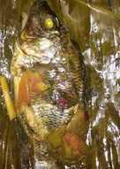 Pepes ikan mujair nila