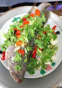 Steam ikan kerapu ala thai resep aku sndri 😝