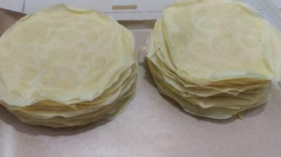 58#kulit risol lentur anti sobek