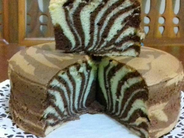 Ogura zebra 4 telur...kekecilan loyang😂