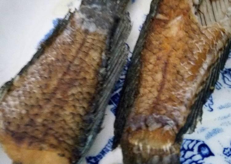 Download 550 Gambar Ikan Gabus Terbaru