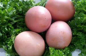 Luộc trứng đúng cách