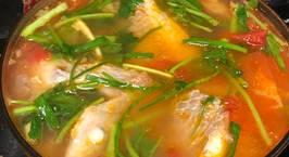 Hình ảnh món Cá điêu hồng nấu ngót