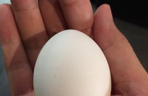 Trứng luộc lòng đào