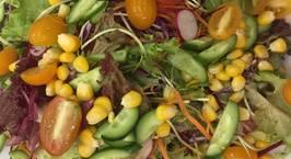 Hình ảnh món Salad ngũ sắc Nhật Bản