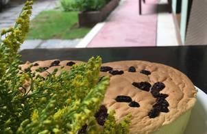 Bánh Bông Lan Nho(Gato Hong Kong Nho)