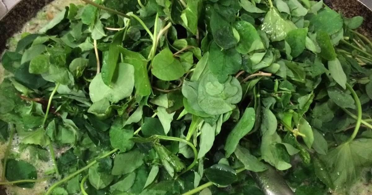 Canh rau vườn ếch bằm(rau má,dền tím,bù ngót)
