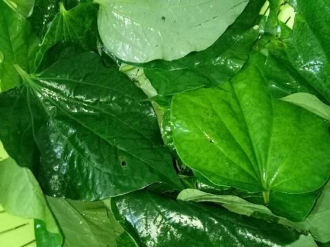 Tàu Hũ Ky Cuộn Lá Lốt (Món Chay) recipe step 3 photo