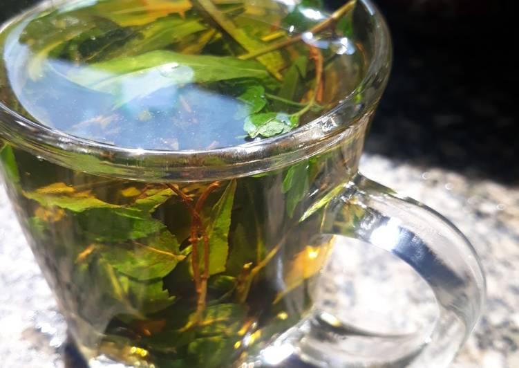 طريقة الشاي الأخضر🌷🌿