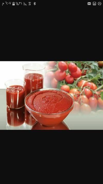 عصير الطماطم #موسم الطماطم