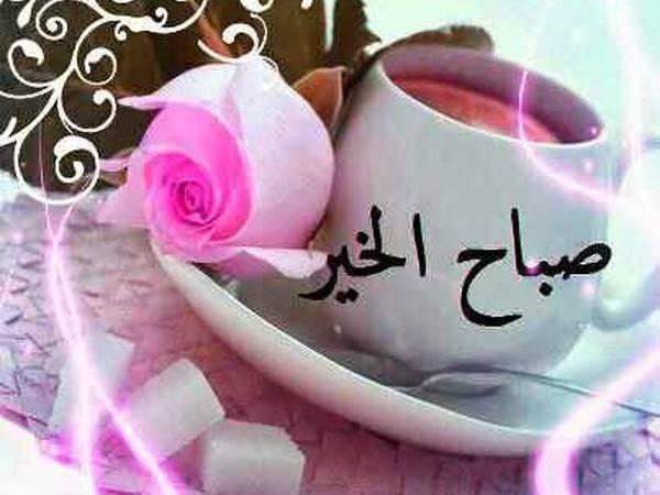 صباح الخير 🌹🤗☺️😘