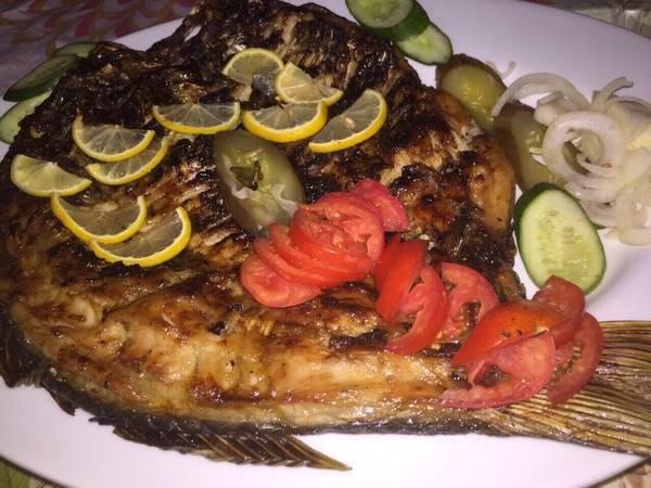 سمك كاردينيا 💞💞