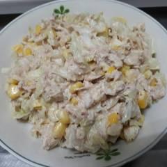 鮪魚高麗菜絲沙拉 的試煮成品