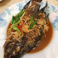 紅燒吳郭魚(附 蔥燒版)