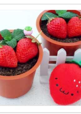 【草莓盆栽奶酪】