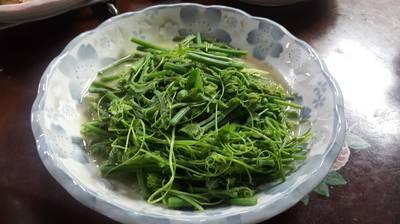 麻油香龍鬚菜