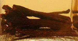 Vanília eszencia recept főfotó