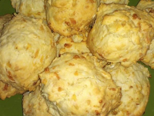 Amerikai pamacs (Biscuit)