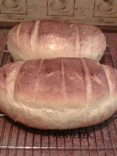 Krumplis kenyér (kenyerek)