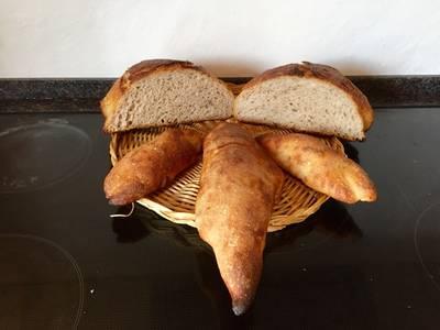 Grahams/manitobahvedebrød med øl og surdej. Et brød bagt i gryde, boller og baguetter på stålplade