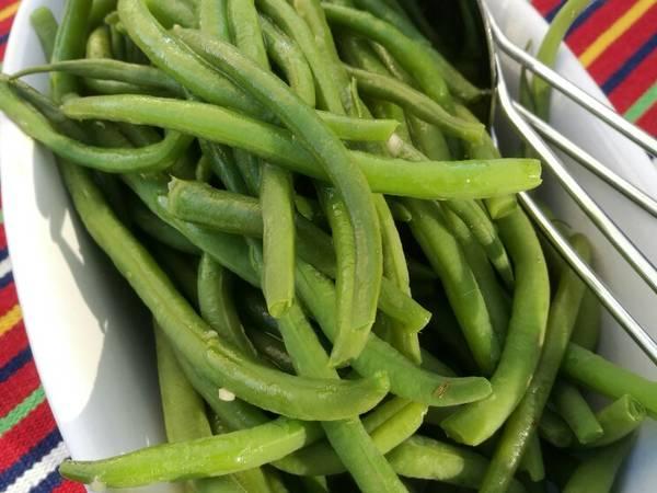 Refugee beans