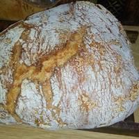 Ψωμί χωρίς ζύμωμα στη γάστρα- Ζωή