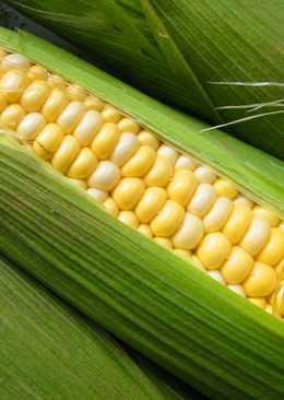 Маринованная молодая кукуруза