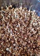 Заготовка для гранулы