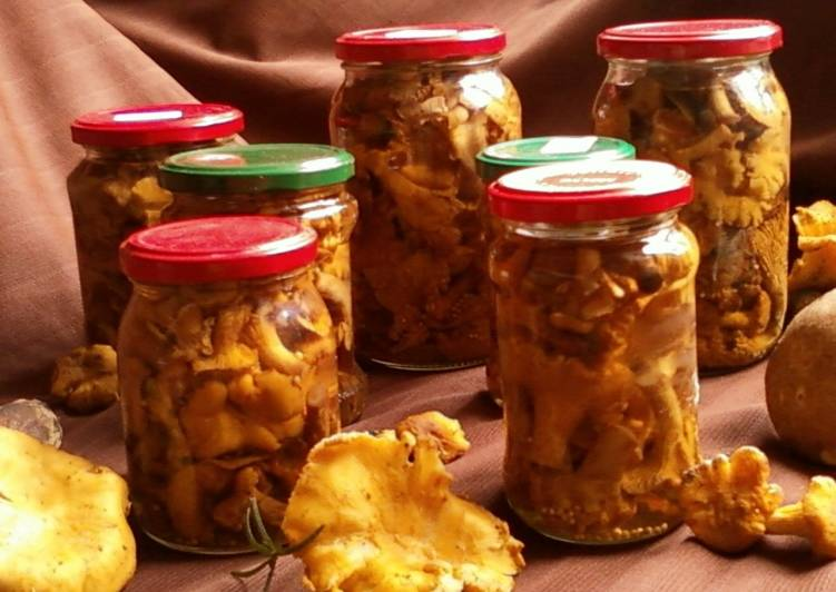 Соленые лисички на зиму рецепты
